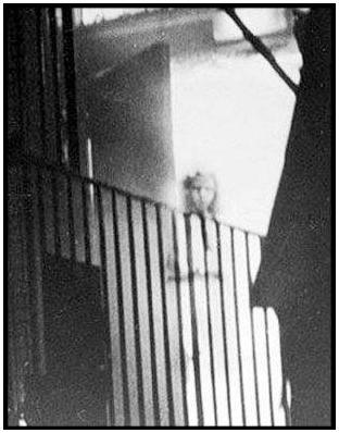 Resultado de imagen para imagen del cuento ser infeliz de Kafka